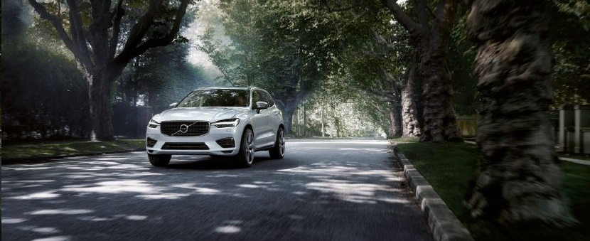 xc60campagna1